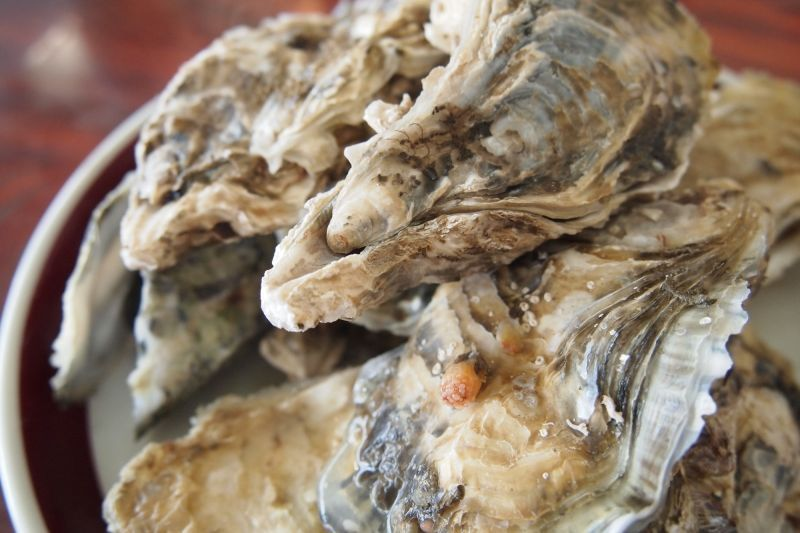 "If you want to eat all-you-want oysters,  then you must visit Uramura in Toba City!  Let's go to enjoy the winter delicacy ""Oyster""  with your stomach full !"