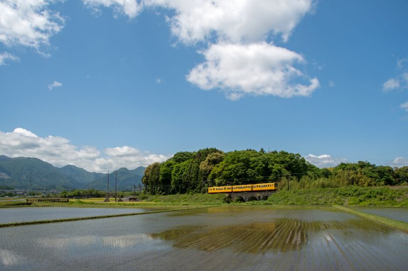 Japan Local Railway : Sangi Railway Adventure
