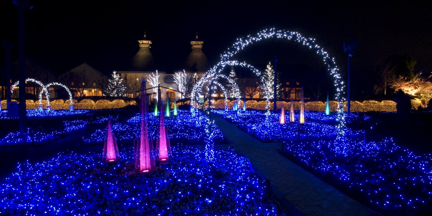 One of the largest in Japan! Both the illumination and the flower garden are overwhelming!