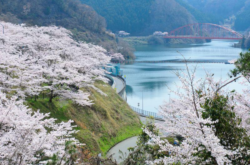 El lago Shourenjiko