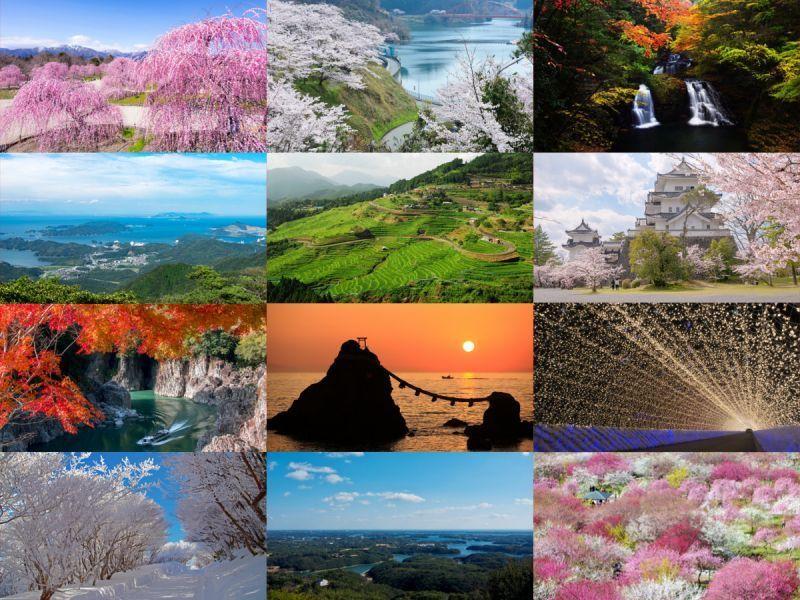 La coloración roja de las hojas en otoño, las flores del cerezo, los ciruelos… ¡Todos los sitios para tomar una imagen fotogénica están aquí!