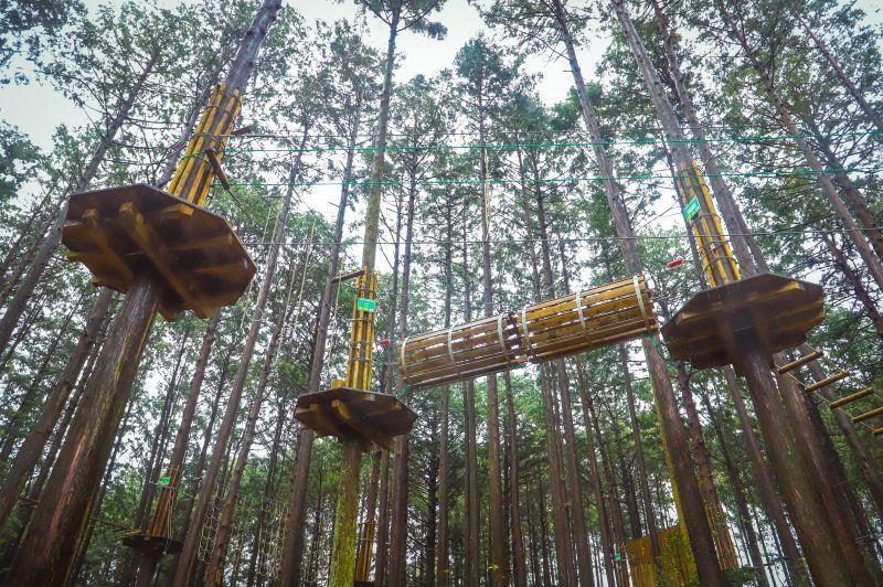 ผจญภัยสุดมันส์ในป่า ปลดปล่อยพลังให้สุด ด้วยกิจกรรมเอาใจคนชอบแนวแอดเวนเจอร์ ที่  Forest Adventure Yunoyama