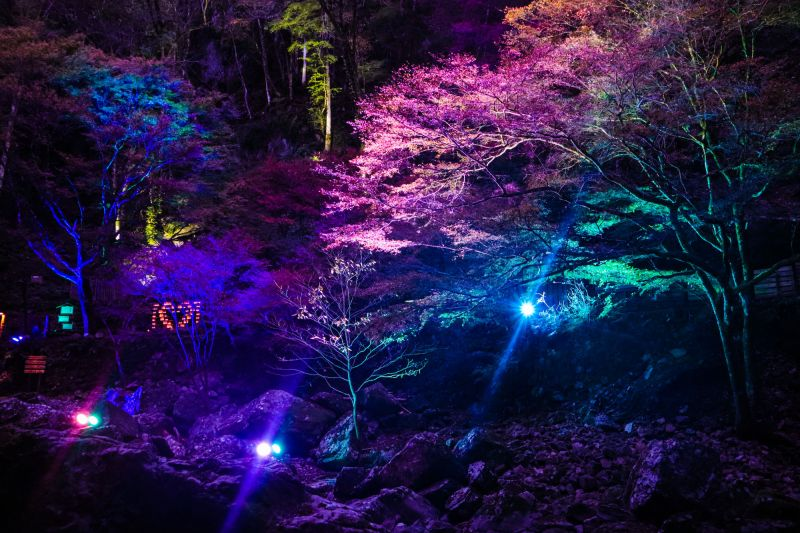 「赤目四十八滝」七變化夜燈+當地美食滿載之番外篇♪