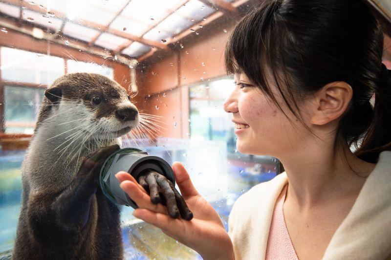 眾多可愛動物就在你身邊!能用超近距離與海洋動物親密接觸的水族館「伊勢SEA PARADAISE」(伊勢海洋互動水族館)