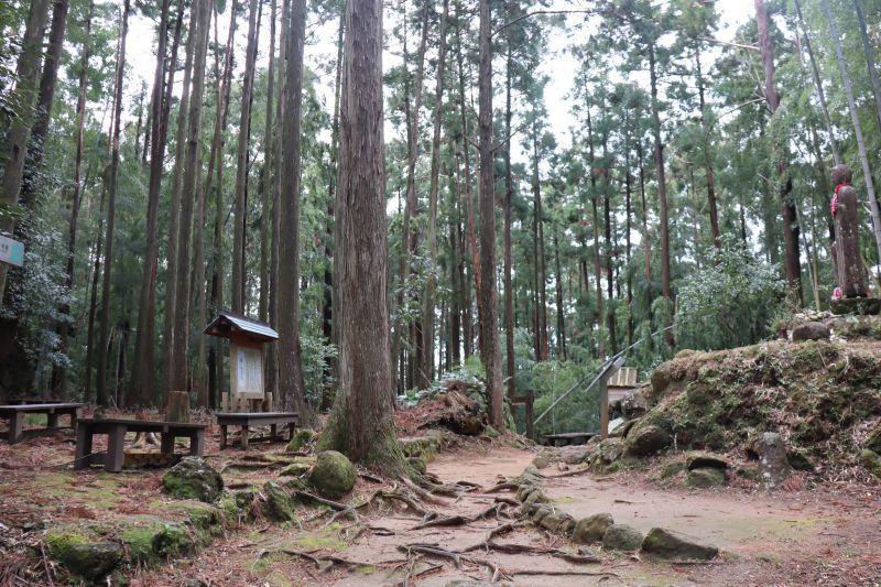 依循古代人的腳步,欣賞大自然的美麗景致,來一趟聖地巡迴之旅「熊野古道伊勢路-松本峠」