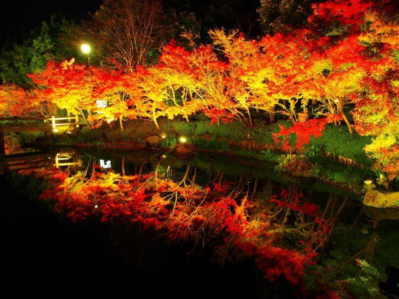 名花之里:日本,三重縣